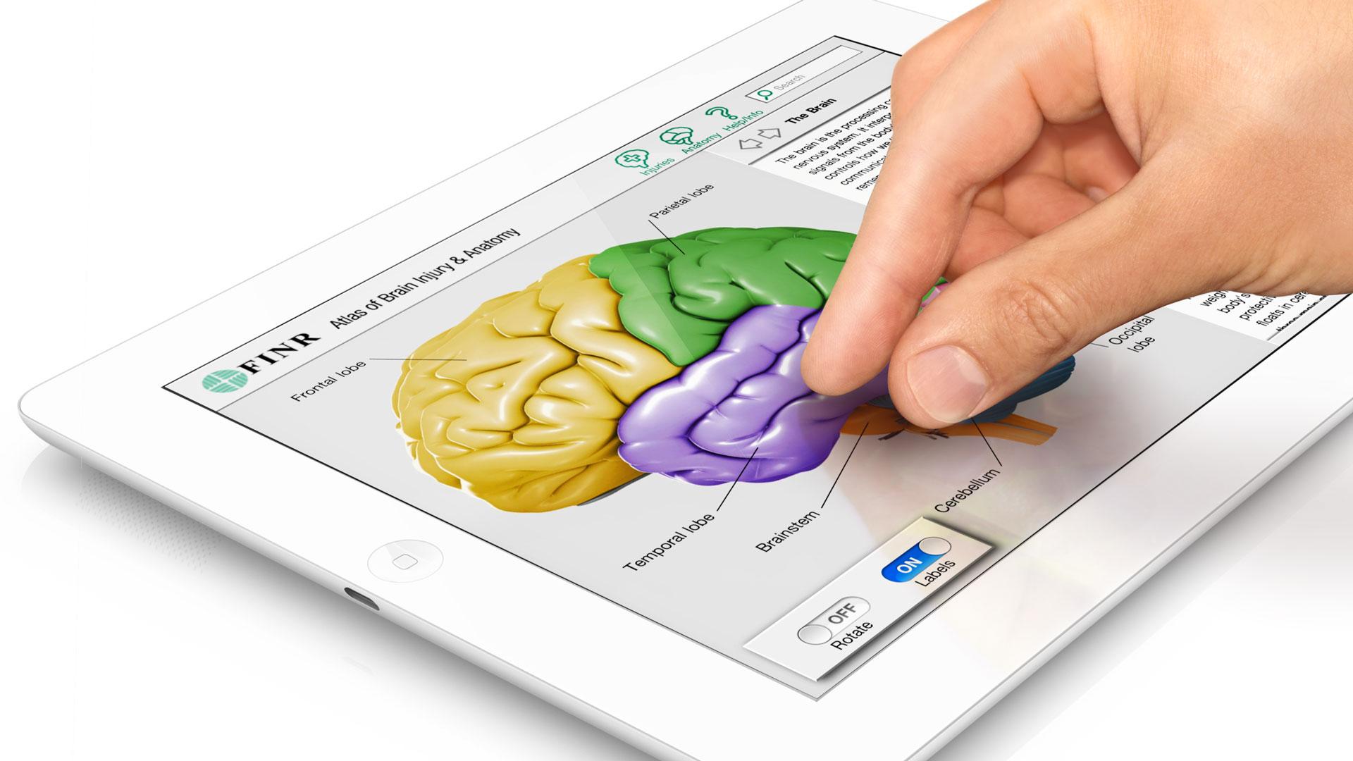 axs-studio-medical-ipad-app-neuroanatomy-atlas-interactive-011