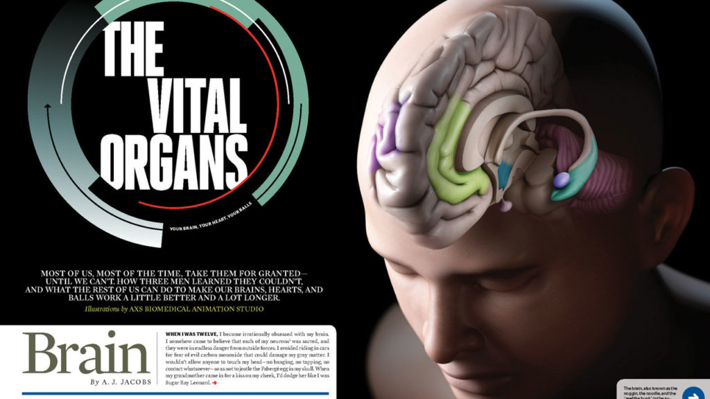 axs-studio-vital-organs-esquire-magazine-medical-illustration-022
