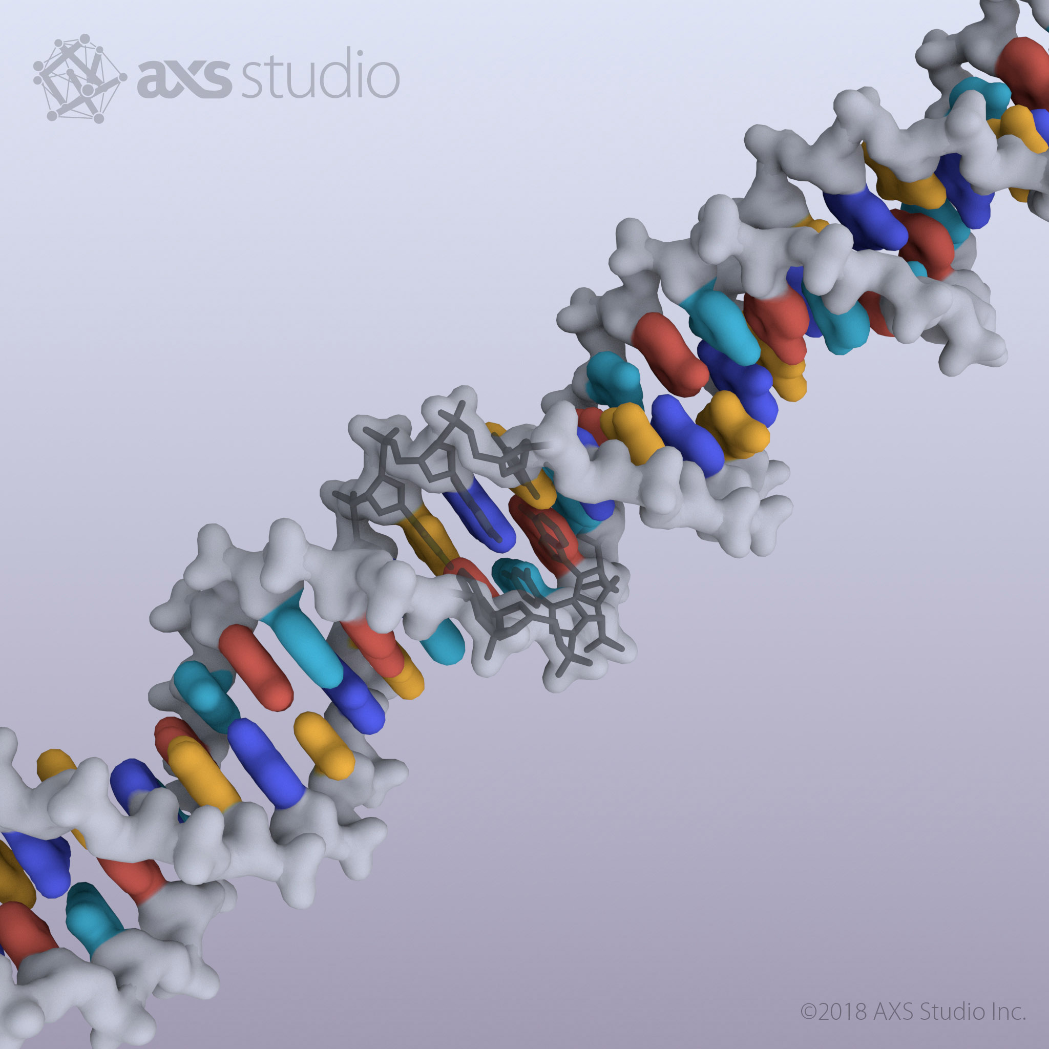 axs-studio-dna-virtual-reality-vr-double-helix-01