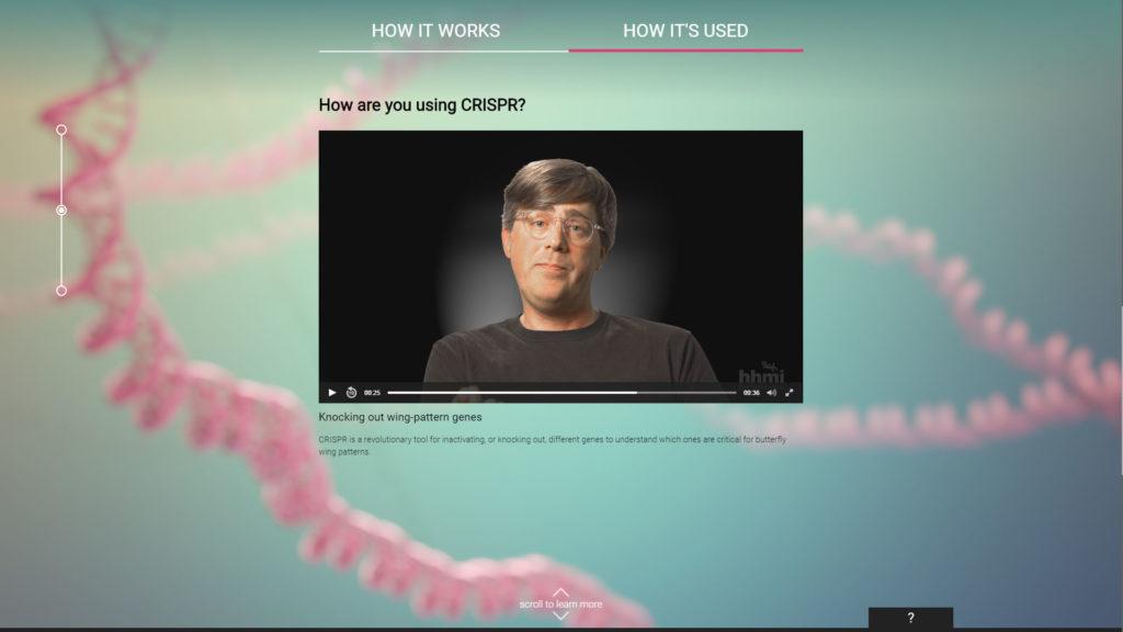 axs-studio-scientific-interactive-crispr-cas-9-HHMI-04